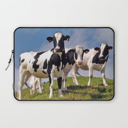 Young Holstein cows Laptop Sleeve