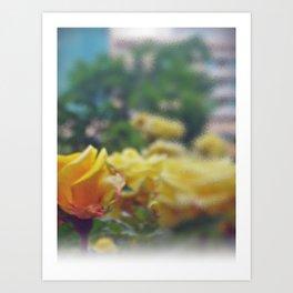 Aroma x 4 Art Print