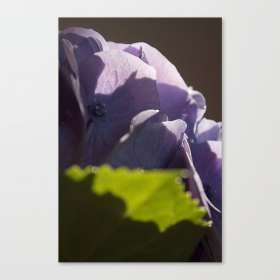 Whispers of happiness Canvas Print