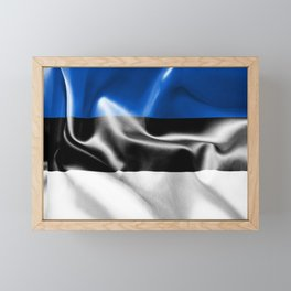 Estonia Flag Framed Mini Art Print