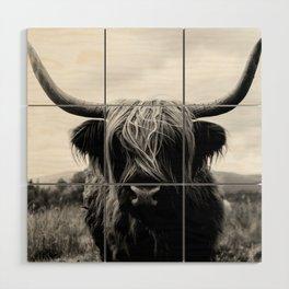 Scottish Highland Cattle Black and White Animal Wood Wall Art