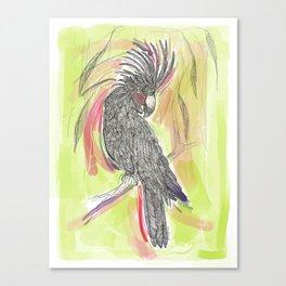 Lime wash Cockatoo Canvas Print