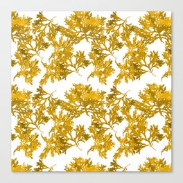 Ocre Seaweed Pattern Canvas Print