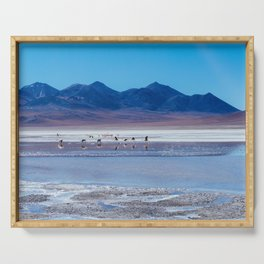 Flamingoes in the Atacama Desert, Bolivia Serving Tray