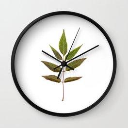 Leaf Botanical Print Wall Clock