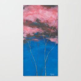 Up Canvas Print