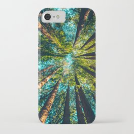 Looking Up At Trees In A Dense Forest iPhone Case
