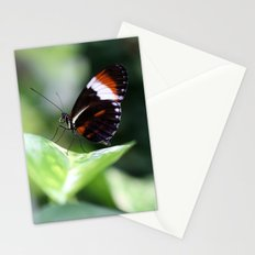macro butterfly Stationery Cards
