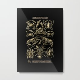 """Decapoda"" from ""Art Forms of Nature"" by Ernst Haeckel Metal Print"