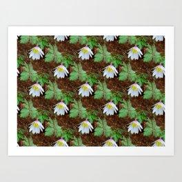 Diagonal rows of nodding flowers Art Print