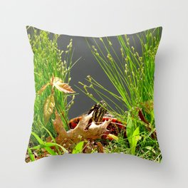 Turtle hiding in the leaves Throw Pillow