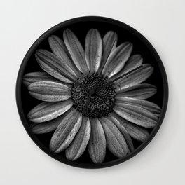 Darkened Daisy Wall Clock