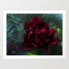 Ruby Peoni Art Print