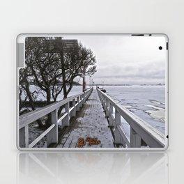 Frozen Finland Laptop & iPad Skin