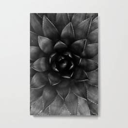 Succulent Black And White Photography Metal Print