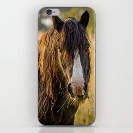 Autumn Horse iPhone Skin