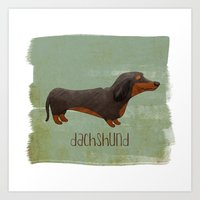 dachshund Art Prints featuring Dachshund by 52 Dogs