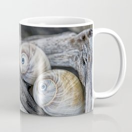 Shark's eye shells and driftwood Coffee Mug