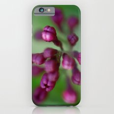 Arboretum Lilac iPhone 6 Slim Case