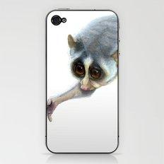 Slender Loris iPhone & iPod Skin