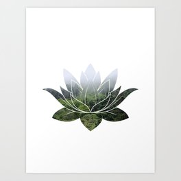 Forest Photography Lotus Art Print
