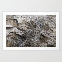 Stone Track Art Print