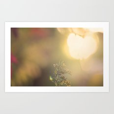 Fall Haze Art Print