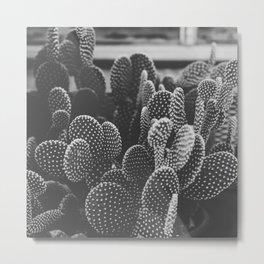Prickly, Vol. II Metal Print
