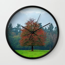 Lonely Little Red Tree In Wood Clearing Ultra HD Wall Clock