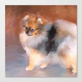 Tiny Pomeranian Canvas Print