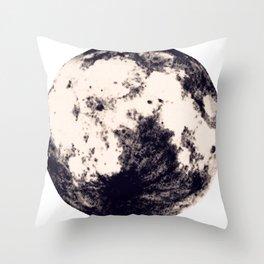 Splendor Throw Pillow