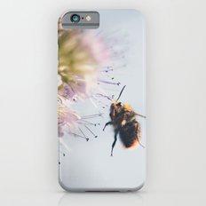 beelanding Slim Case iPhone 6s