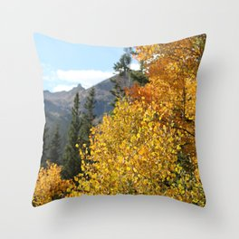 Autumn in the Rocky Mountains at Diamond Lake Trail, Eldora Colorado Throw Pillow