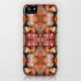 Magic Carpet Ride II iPhone Case