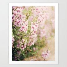 Flowering Path Art Print