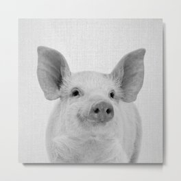 Pig - Black & White Metal Print