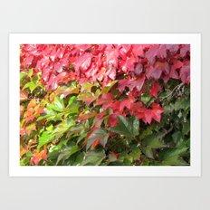 leaves wall Art Print