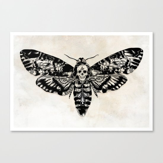Death's-head Hawkmoth Canvas Print