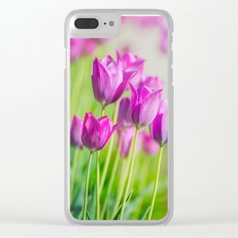 Beautiful view of tulips under sunlight landscape. Clear iPhone Case