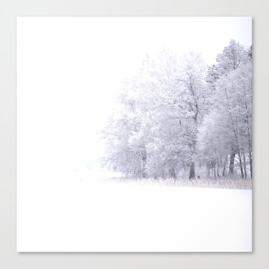 White Forest Canvas Print