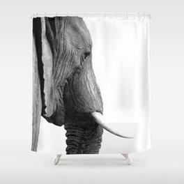 Black and white elephant portrait Shower Curtain