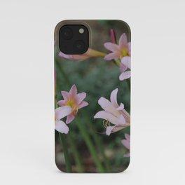 Beauty Surrounds Us iPhone Case