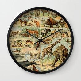 Adolphe Millot - Nouveau Larousse Illustré - Mammifères A (Mammals) (1906) Wall Clock