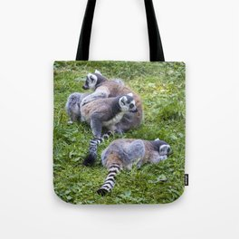 Lemur guerrillas Tote Bag