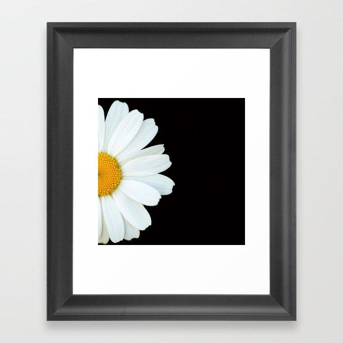 Hello Daisy - White Flower Black Background #decor #society6 #buyart Gerahmter Kunstdruck