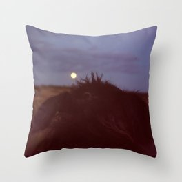 dog watching full moon Throw Pillow