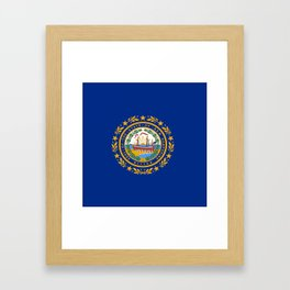 flag new hampshire,america,us,granite,new england, new hampshirite,Concord,keene,Nashua,portsmouth Framed Art Print