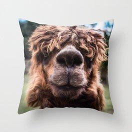 Curious Llama Throw Pillow