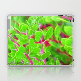 Manzanita I Laptop & iPad Skin