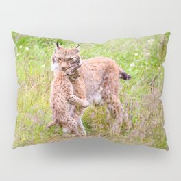 Marvelous Beautiful Lynx Mother Carrying Baby Close Up Ultra HD Pillow Sham
